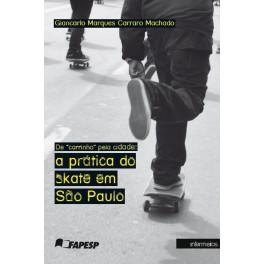 De carrinho pela cidade: a prática do skate em São Paulo