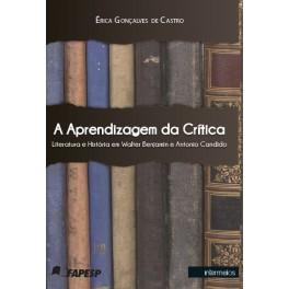 A aprendizagem da crítica – literatura e história em Walter Benjamin e Antonio Candido
