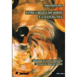 Entre a beleza do morto e a cultura viva – mediadores culturais na São Paulo do início do milênio